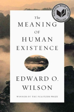 The Meaning of Human Existence (Hardcover)
