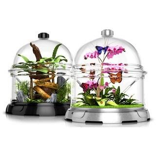 BioBubble Terra Kit