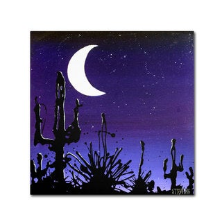 Roderick Stevens 'Desert Moon' Canvas Art