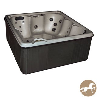Christopher Knight Home Portable Spa LS 600 with Opal Shell and Charcoal Cabinet