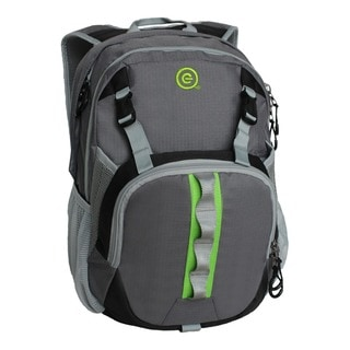 Ecogear Flash Laptop Backpack