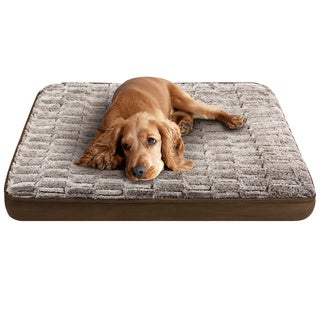 Friends Forever Memory Foam Orthopedic Napper Pet Bed