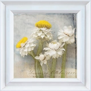 Thea Schrack 'Winged Everlasting' Framed Wall Art
