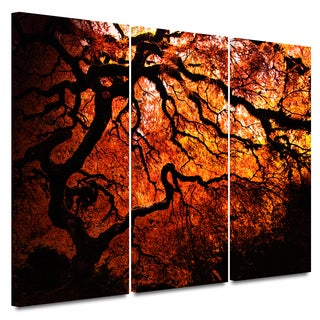 John Black 'Fire Breather: Japanese Tree' 3-piece Gallery-wrapped Canvas Art Set