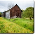 'Rustic House in Napa Valley' Canvas Art