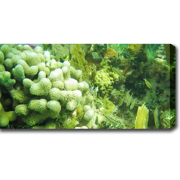 'Great Barrier Reef' Canvas Art