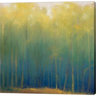 Teri Jonas 'Deep Woods in Summer' Gallery-wrapped Canvas Art