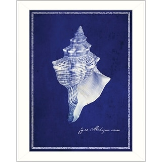 GI Artlab 'Conch Shell' Framed Wall Art