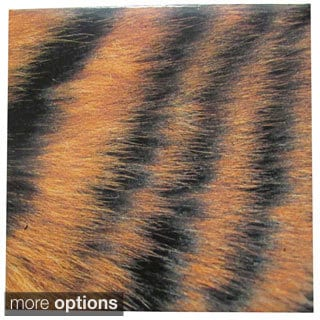 Animal Pattern Bengal Tiger Print Ceramic Wall Tiles (Pack of 20)