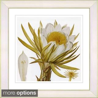 Zhee Singer 'Vintage Botanical No. 007 - White' Framed Fine Art Print