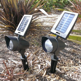 Paradise Cast Aluminum Solar Power Flood Light 2-pack plus Free Color Changing LED Bottles