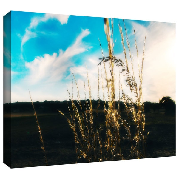ArtWall John Black 'Field' Gallery-Wrapped Canvas