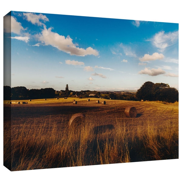 ArtWall John Black 'Open Fields' Gallery-Wrapped Canvas