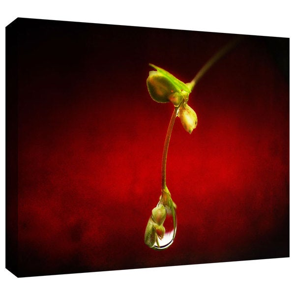 ArtWall Dragos Dumitrascu 'Tears in the Rain' Gallery-Wrapped Canvas