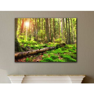 ArtWall Dragos Dumitrascu 'Back to Green' Gallery-Wrapped Canvas