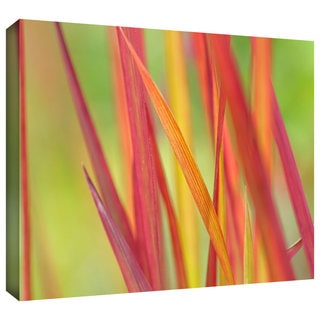 ArtWall Cora Niele 'Red Winter' Gallery-Wrapped Canvas