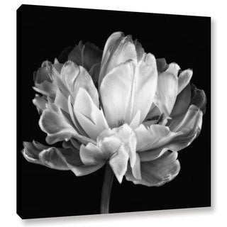 ArtWall Cora Niele 'Tulipa Double Black & White II' Gallery-Wrapped Canvas