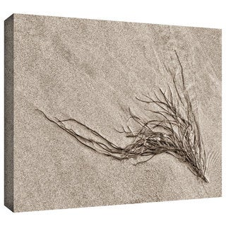 ArtWall Cora Niele 'Beach Find I' Gallery-Wrapped Canvas