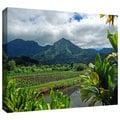 ArtWall Kathy Yates 'A Taro Farm in Hanalei' Gallery-Wrapped Canvas