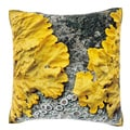 Yellow Lichen on Tree Bark 18-inch Velour Throw Pillow