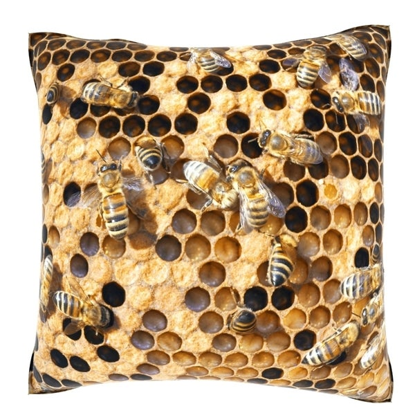 Honey Bee Hive 18-inch Velour Throw Pillow