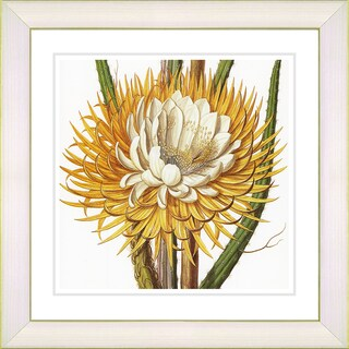 Zhee Singer 'Vintage Botanical No 015 - White' Framed Fine Art Print