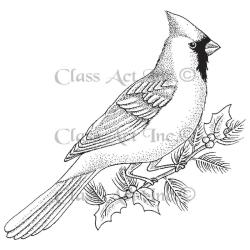 Class Act Cling Mounted Rubber Stamp 4 X5.75 - Large Cardinal
