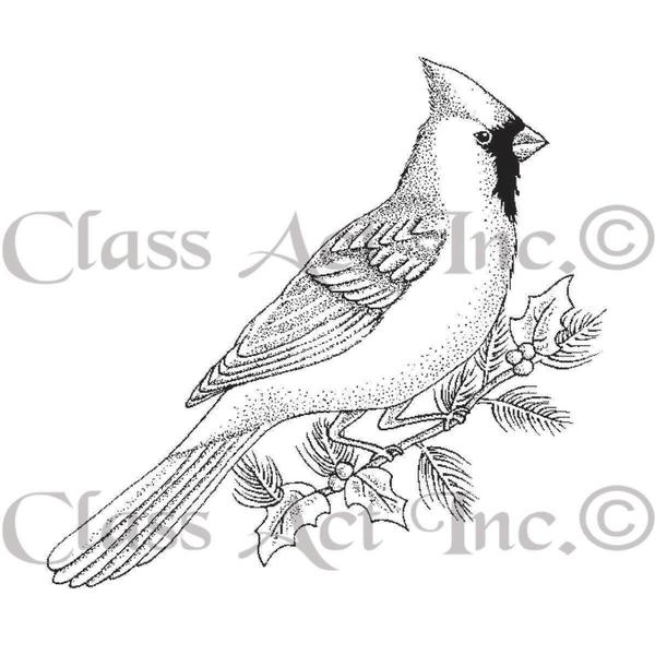 Class Act Cling Mounted Rubber Stamp 2.75 X3.75 - Small Cardinal