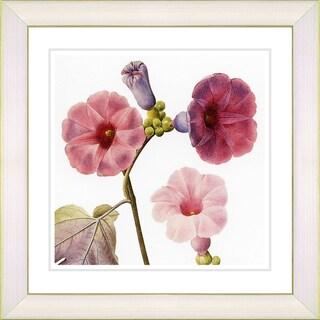Zhee Singer 'Vintage Botanical No. 017 - White' Framed Fine Art Print