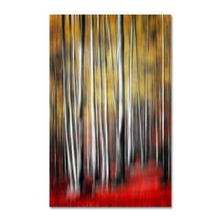 Philippe Sainte-Laudy 'Osmosis' Canvas Art
