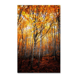 Philippe Sainte-Laudy 'On Fire' Canvas Art