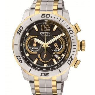 Citizen Men's 'Primo Stingray' Two-tone Stainless Steel Analog Display Watch