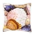 Sea Shell Collection 18-inch Velour Throw Pillow