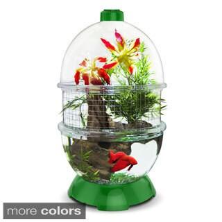 BioBubble WonderBubble Premium Mesh Animal/ Plant Habitat