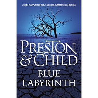 Blue Labyrinth (Hardcover)