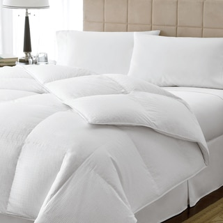 Luxury Oversized 800 Fill Power Queen/ King-size Goose Down Comforter