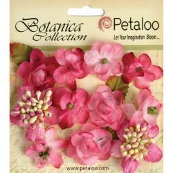 Botanica Minis 11/Pkg - Fuchsia