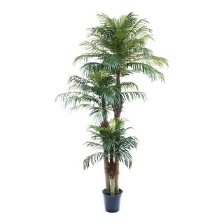 UV Treated Phoenix Palm Tree Decorative Silk Plant