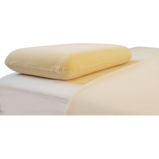 Big Sleep Standard Molded Memory Foam Pillow with Bonus Pillow