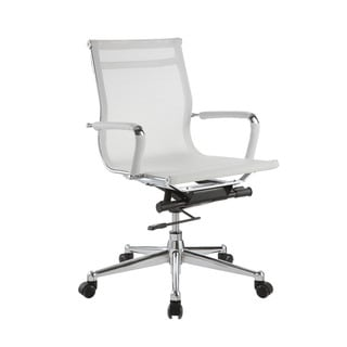 Pantera White Nylon and Chrome Low Back Desk Chair