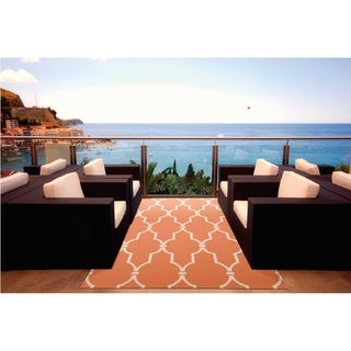 Nourison Indoor/ Outdoor Orange Rug (4'3 x 6'3)