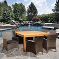Louise 9-piece Teak and Wicker Outdoor Dining Set