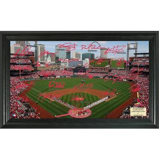 St. Louis Cardinals Signature Field
