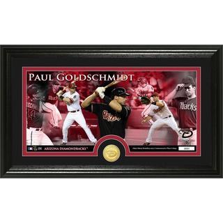 Paul Goldschmidt Bronze Coin Panoramic Photo Mint