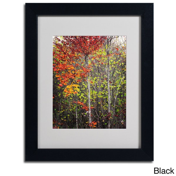 Philippe Sainte-Laudy 'Colour Touch' Framed Matted Art