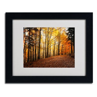 Philippe Sainte-Laudy 'Autumn Leaves' Framed Matted Art