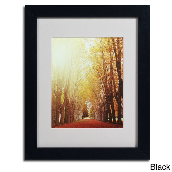 Philippe Sainte Laudy Fountains Of Light Framed Matted