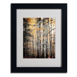 Philippe Sainte-Laudy 'Autumn Tones' Framed Matted Art