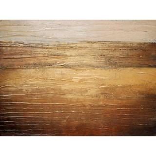'The Prairie' Canvas Art