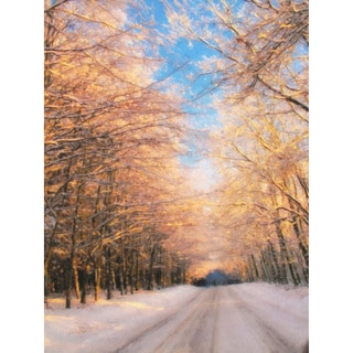 'Snow Lane' Vertical Canvas Art